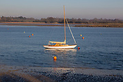 Small sailing yacht moored in winter on River Deben, Waldringfield, Suffolk, England, UK