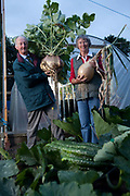Peter Glazebrook with his wife Mary a giant onion and Swede. Peter Glazebrook has held eight world records in his time but is currently holder of only two with heaviest parsnip and longest beetroot, 12lb and 21ft. respectively. Giant vegetable growing is not a hobby for the faint hearted. The growers have to tend to the vegetables almost every day (including Christmas) spending up to 80 hours a week, tending, nurturing, growing and spending thousands on fertilisers, electricity and green houses. The reward is to be crowned world record holder of largest, longest or heaviest in class, cabbages weighing in at 100lb, carrots stretching 19 ft and pumpkins tipping the scales at 800lb. it's a competitive business though and global; some times the record may stand for only hours before a fellow competitor, somewhere,  knocks a grower off the coveted spot.
