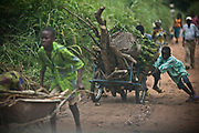 Children haul firewood and vegetables on a cart in Koukoulou. With the poor economy, few operating schools, and a high illiteracy rate, children are often forced to earn a living through manual labor and street vending.