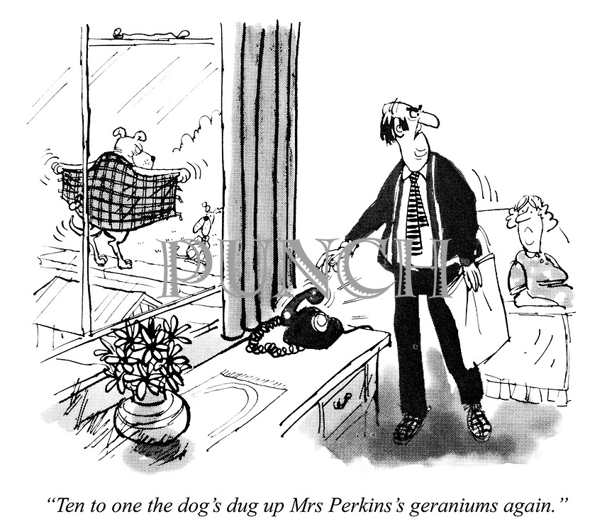 """""""Ten to one the dog's dug up Mrs Perkins's geraniums again."""""""