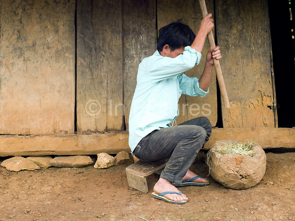 After harvesting and the bark has been peeled off in long thin lengths, the hemp yarn is pounded in a large wooden mortar to soften it, Ban Long Kuang, Houaphan province, Lao PDR. Making hemp fabric is a long and laborious process; the end result is a strong durable cloth with qualities similar to linen which the Hmong women use to make their traditional clothing. In Lao PDR, hemp is now only cultivated in remote mountainous areas of the north.