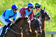 April 7, 2012 - Gus Dahl wins the Sandhills Cup aboard Cuse at Stoneybrook Steeplechase, Raeford NC
