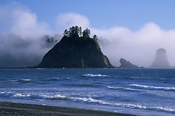 Sea stacks in fog, Rialto Beach, Olympic National Park, Washington, United States