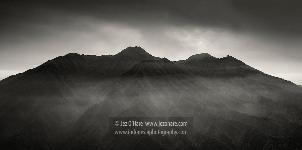 Mount Gede-Pangrango National Park, Sukabumi, West Java, Indonesia.