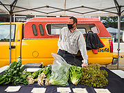 "23 MAY 2020 - AMES, IOWA: JASON JONES sells salad greens in his stand at the Farmers' Market in downtown Ames. Jones grows his greens on a farms in Maxwell, IA. He said it felt ""really good"" to be able to reopen his market stand. The Ames Main Street Farmers' Market reopened Saturday after nearly a month of only online sales because of Iowa's bans on large gatherings caused by the COVID-19 pandemic. Only about 15 venders set up stalls Saturday and attendance was significantly lower than normal. All of the venders wore face masks and many, but not all, of the shoppers wore face masks. Farmers' markets are popular community gatherings in Iowa, but they've been on hiatus since the Coronavirus (SARS-CoV-2) pandemic. At this time, Iowa farmers' markets are not allowed to have entertainment or sell non-food or non-agricultural goods.          PHOTO BY JACK KURTZ"