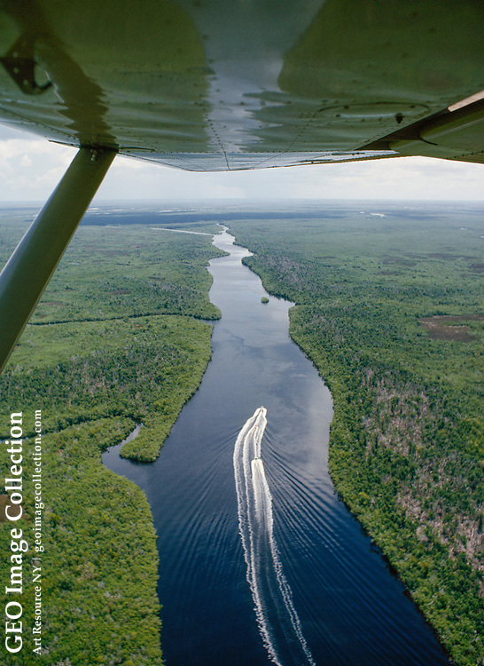 A plane trails a boat cruising the Shark River amid mangrove thickets.