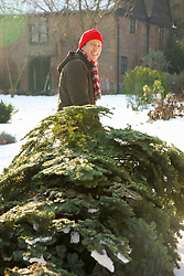 Smiling Man Dragging Christmas Tree