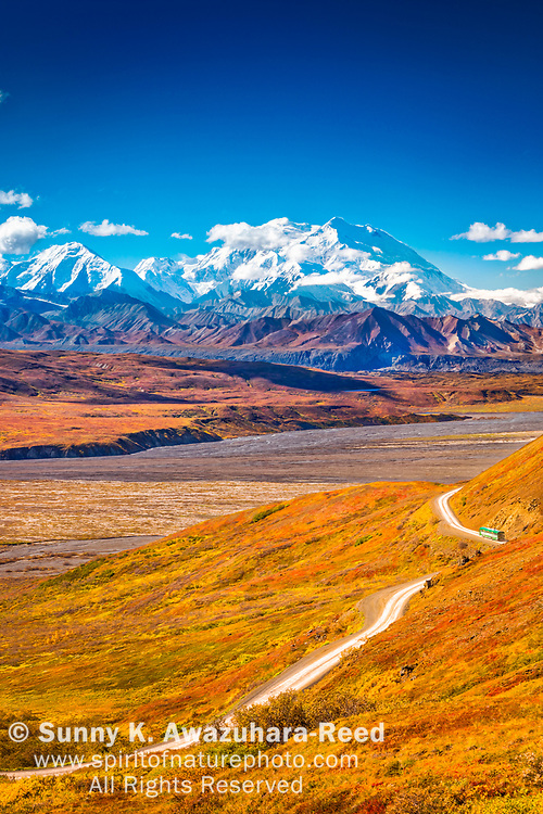 Mount Denali (McKinley), viewed from above Eielson area. Shuttle bus, Park Road and fall color tundra hill is in the foreground. Denali National Park & Preserve, Alaska, Autumn. Vertical image.