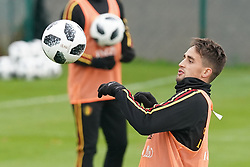 November 12, 2017 - Tubize, BELGIUM - Adnan Januzaj pictured during a training session of Belgian national soccer team Red Devils, Sunday 12 November 2017, in Tubize. The team will be playing a friendly game against Japan on 14th November. BELGA PHOTO BRUNO FAHY (Credit Image: © Bruno Fahy/Belga via ZUMA Press)