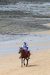 Mohd T Aseel Abdul Mutalib, (MAS), Eladina Kungfu<br /> Alltech FEI World Equestrian Games™ 2014 - Normandy, France.<br /> © Hippo Foto Team - Leanjo de Koster<br /> 25/06/14