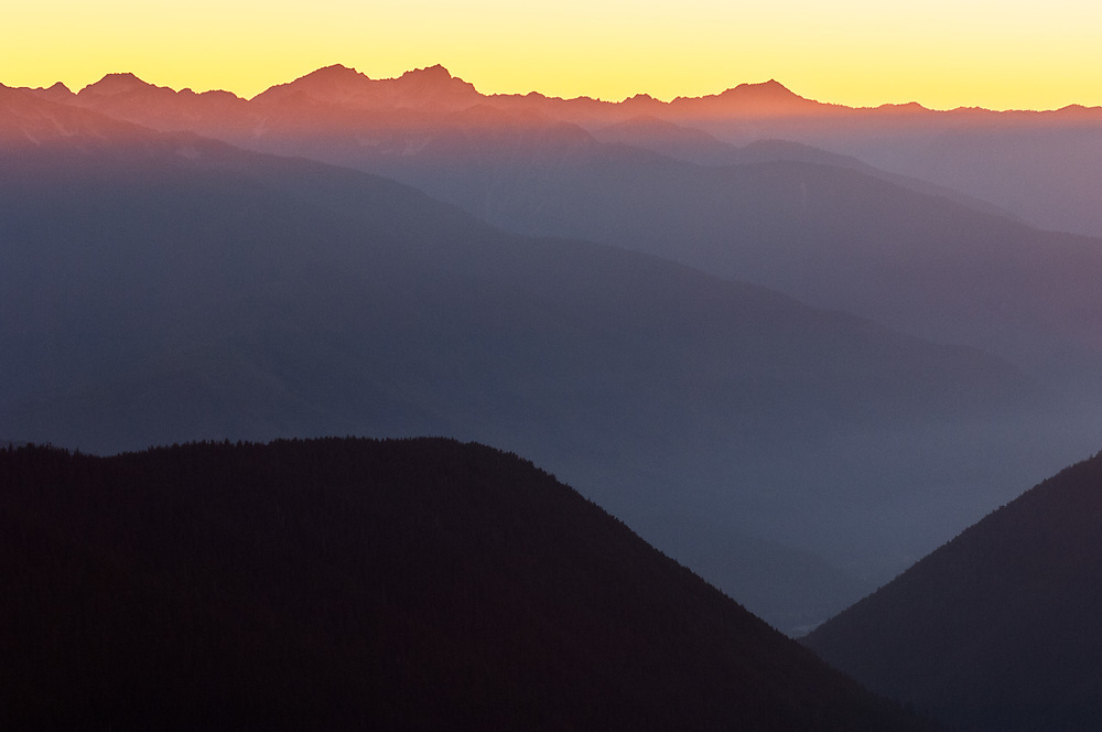 Lillian River Valley, evening light, August, Elwha River watershed, Olympic National Park, Clallam County, Washington, USA
