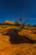Rain water collects in several potholes in the hard, sandstone desert landscape at Tuweep in Grand Canyon National Park, Arizona. Tuckup Point is visible in the background. This image was captured at night; the landscape was lit by the full moon.
