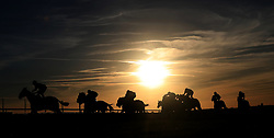 Runners and riders head down the back straight during The Newmarket Journal Handicap during day three of the Cambridgeshire Meeting at Newmarket Racecourse.
