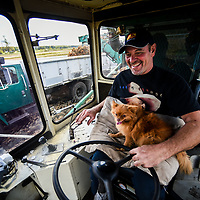 Ray Elmer drives the onion harvester which loads up a truck following along on the side while his dog, Desirée oversees the operation at the onion fields for New York Bold in Oswego. Photos by N. Scott Trimble | Syracuse.com | The Post-Standard
