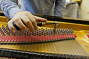 Piano maker male tuning a piano. John Broadwood and sons piano makers by Royal appointment, they are the oldest established piano maker in the World. Workshop and piano museum, Finchcocks, Kent, UK.
