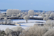 Schleswig-Holstein winter landscape with fields, hedges and oaks. Kiel, Germany | Schleswig holstein winter Landschaft mit Feldern, Hecken und Eichen. Kiel, Deutschland