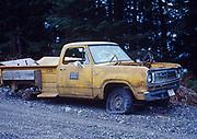Bureau of Indian Affairs Pickup Truck abandoned outside of Hydaburg, Alaska.