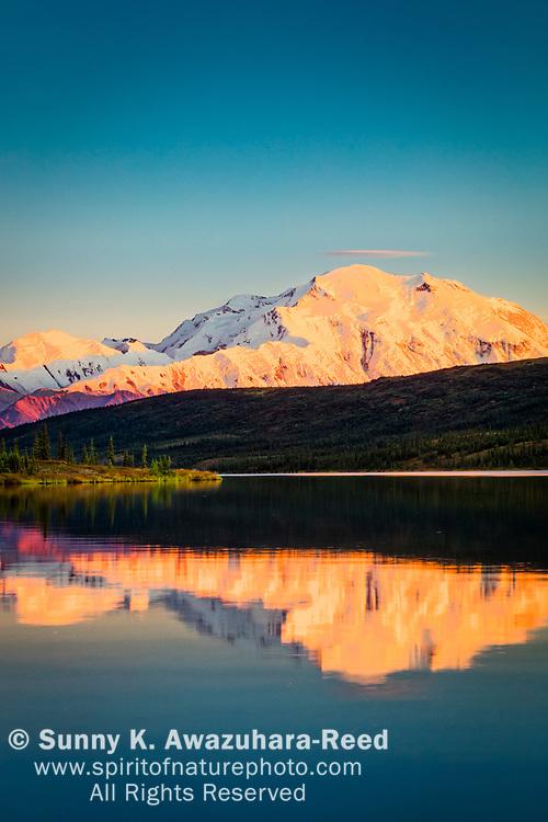 Sunset glow on Mt. Denali (McKinley) reflects on Wonder Lake, Denali National Park & Preserve, Interior Alaska, Autumn. Vertical image.