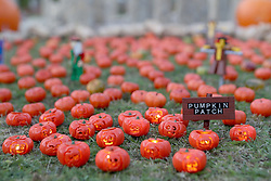 Jack-o-lanterns from the new pumpkin patch at Legoland Windsor Resort in Miniland, ahead of their Halloween 'brick or treat' season.