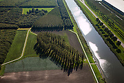 Nederland, Flevoland, Almere-Hout,  08-09-2009. De Groene Kathedraal, landschapskunstwerk van Marinus Boezem: de aangeplante bomen (Italiaanse populieren) volgen de plattegrond van de Notre Dame van Reims. Voorbeeld land art..The Green Cathedral, artwork by Marinus Boezem: the planted trees (Italian poplar) follow the plan of the Notre Dame of Reims.luchtfoto (toeslag); aerial photo (additional fee required); .foto Siebe Swart / photo Siebe Swart