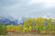 """Autumn colors and a storm at the old Bar BC Ranch in Jackson Hole Wyoming. This original ranch was deserted after an expansion of Grand Teton Park.<br /> <br /> For production prints or stock photos click the Purchase Print/License Photo Button in upper Right; for Fine Art """"Custom Prints"""" contact Daryl - 208-709-3250 or dh@greater-yellowstone.com"""