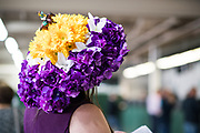 November 3, 2018: Breeders' Cup Horse Racing World Championships. Fancy hat.