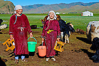 Mongolie, province de Bayankhongor, campement nomade, traite des yaks // Mongolia, Bayankhongor province, nomad camp, time to milk the yak