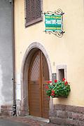 clement tempe fuchs winery sigolsheim alsace france