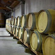 Wine barrels at the cellar door at Cloudy Bay Vineyard, Jackson Road., Marlborough, New Zealand..The winery and vineyards are situated in the Wairau Valley in Marlborough at the northern end of New Zealand's South Island. This unique and cool wine region enjoys a maritime climate with the longest hours of sunshine of any place in New Zealand. Wairau Valley, Marlborough, New Zealand. 9th February 2011. Photo Tim Clayton