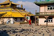 Monk at Gandantegchinlen Monastery, Ulaanbaatar, Mongolia.