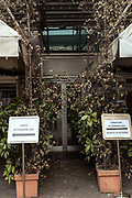 MILAN: few meters from MIilan Centra Station there is the 4 stars  Michelangelo Hotel, usually packed of tourists and business people, since two months has been transformed to host covid-19 positive patients, who has not a place where to spend their quarantine safely