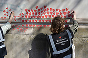 The red hearts that form the National Covid Memorial Wall, a tribute to the 150,000-plus British victims of the Coronavirus pandemic. Bereaved family and friends of Covid-19 victims have started working on the wall located outside St Thomas' Hospital, and which faces the Houses of Parliament in Westminster, on 30th March 2021, in London, England. Prime Minister Boris Johnson was treated for Covid at St Thomas' last year.