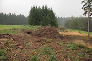 cleared of land Black Forest Germany