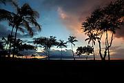 Sunset through the palms of Lahaina. Maui, Hawaii