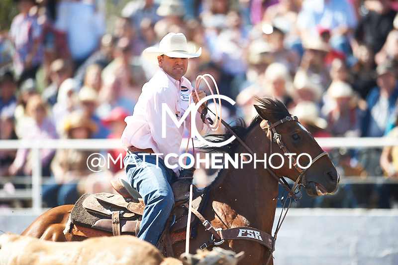 Team roper Clay Tryan of Billings, MT competes at the Clovis Rodeo in Clovis, CA.<br /> <br /> <br /> UNEDITED LOW-RES PREVIEW<br /> <br /> <br /> File shown may be an unedited low resolution version used as a proof only. All prints are 100% guaranteed for quality. Sizes 8x10+ come with a version for personal social media. I am currently not selling downloads for commercial/brand use.