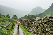 Walking in heavy rain under Eagle Crag near Stonethwaite. England Coast to Coast hike with Wilderness Travel, day 4 of 14: Rosthwaite to Grasmere, in Lake District National Park, United Kingdom, Europe. Today we climbed to Lining Crag and descended via Easdale to Grasmere. Overnight at Keswick Country House, in Cumbria county. [This image, commissioned by Wilderness Travel, is not available to any other agency providing group travel in the UK, but may otherwise be licensable from Tom Dempsey – please inquire at PhotoSeek.com.]