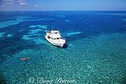 snorkelers and dive boat at Molasses Reef, Florida Keys National Marine Sanctuary, off Key Largo, Florida, U.S.A. ( Western North Atlantic Ocean )