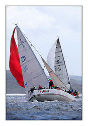 Brewin Dolphin Scottish Series 2011, Tarbert Loch Fyne - Yachting - Day 2 of the 4 day series. Windy!.IRL1141 ,Storm ,Pat Kelly ,Rush SC ,J109..