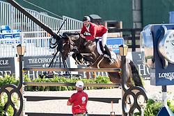 Bruynseels Niels, BEL, Cas de Liberte<br /> World Equestrian Games - Tryon 2018<br /> © Hippo Foto - Dirk Caremans<br /> 19/09/2018