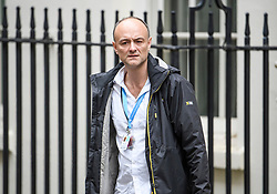 © Licensed to London News Pictures. 03/10/2019. London, UK. Dominic Cummings, special advisor to Boris Johnson, is seen leaving downing street in Westminster, London. The British Prime Minister has sent a new Brexit proposal to the EU ahead of an EU summit later this month. Photo credit: Ben Cawthra/LNP
