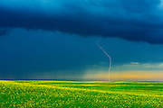 Lightning strike during rain storm on the Canadian Prairie<br /> Deloraine<br /> Manitoba<br /> Canada