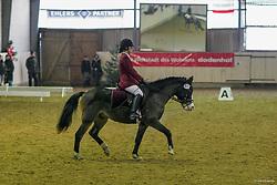 , Lentföhrden 16 - 18.12.2005獮, Dandy von Elisenruh - Neumann, Gesche