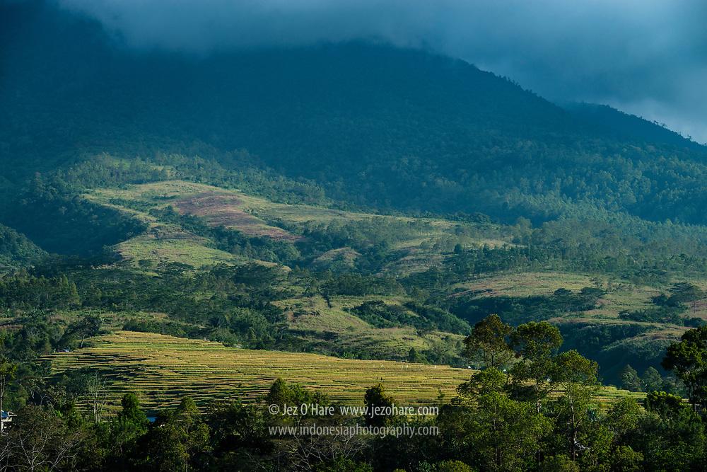 Ruteng, Manggarai, Flores, Nusa Tenggara Timur, Indonesia.