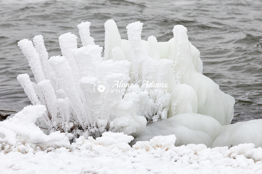 Rime ice covers a plant by the shore at Lake Hefner in Oklahoma City on Thursday, Feb. 11, 2021. Photo copyright © 2021 Alonzo J. Adams.