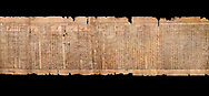 """Ancient Egyptian Book of the Dead papyrus - Spell 81a assuming the form of a lotus associated with the sun god, Iufankh's Book of the Dead, Ptolemaic period (332-30BC).Turin Egyptian Museum.  Black background<br /> <br /> The spell reads """" I am a pure lotus that has ascended by the Sinlight and ia at Ra's nose. I spend my time shedding it on Horus. I am the pure lotus that ascended from the field"""". <br /> <br /> The translation of  Iuefankh's Book of the Dead papyrus by Richard Lepsius marked a truning point in the studies of ancient Egyptian funereal studies. .<br /> <br /> If you prefer to buy from our ALAMY PHOTO LIBRARY  Collection visit : https://www.alamy.com/portfolio/paul-williams-funkystock/ancient-egyptian-art-artefacts.html  . Type -   Turin   - into the LOWER SEARCH WITHIN GALLERY box. Refine search by adding background colour, subject etc<br /> <br /> Visit our ANCIENT WORLD PHOTO COLLECTIONS for more photos to download or buy as wall art prints https://funkystock.photoshelter.com/gallery-collection/Ancient-World-Art-Antiquities-Historic-Sites-Pictures-Images-of/C00006u26yqSkDOM"""