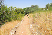 Hermon Stream Nature reserve and Archaeological Park (Banias) Golan Heights Israel