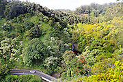 Road to Hana, Upper Puohokamoa Falls, , Hana Coast,