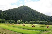 Orava Slovakia, Rural Landscape