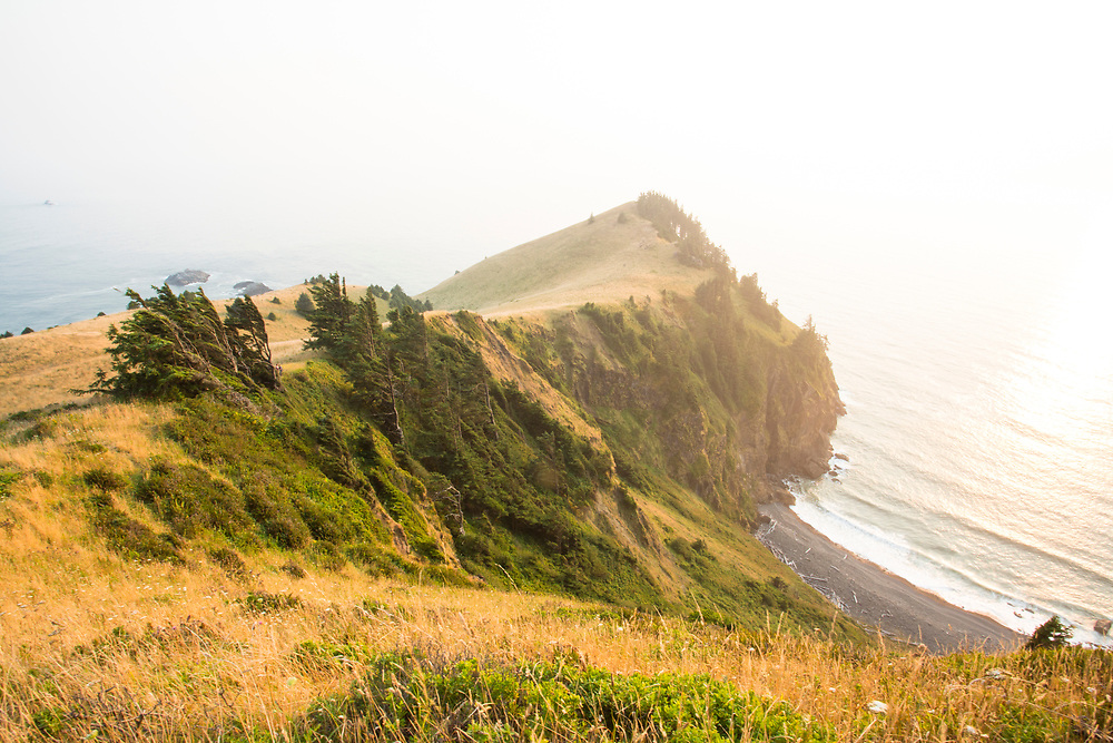 Cascade Head, part of Nature Conservancy is protected from development and preserves this pristine ecosystem at the mouth of the Salmon River. Near Lincoln City, Oregon.