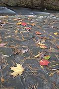Upper Childs Park, Delaware Water Gap